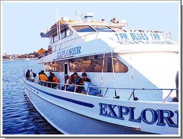 Explorer fishing sheepshead bay for Sheepshead bay fishing boats