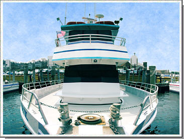 Prowler 5 fishing charter atlantic highlands nj for Atlantic highlands fishing party boats